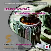 Etude Juin 2012 - SYNTHESE DE L'ECOBILAN SIRMELEC / ADEME DE LA PROFESSION