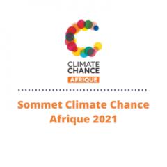 Participez au Sommet Climate Chance-Afrique 2021 au côté du pôle MEDEE